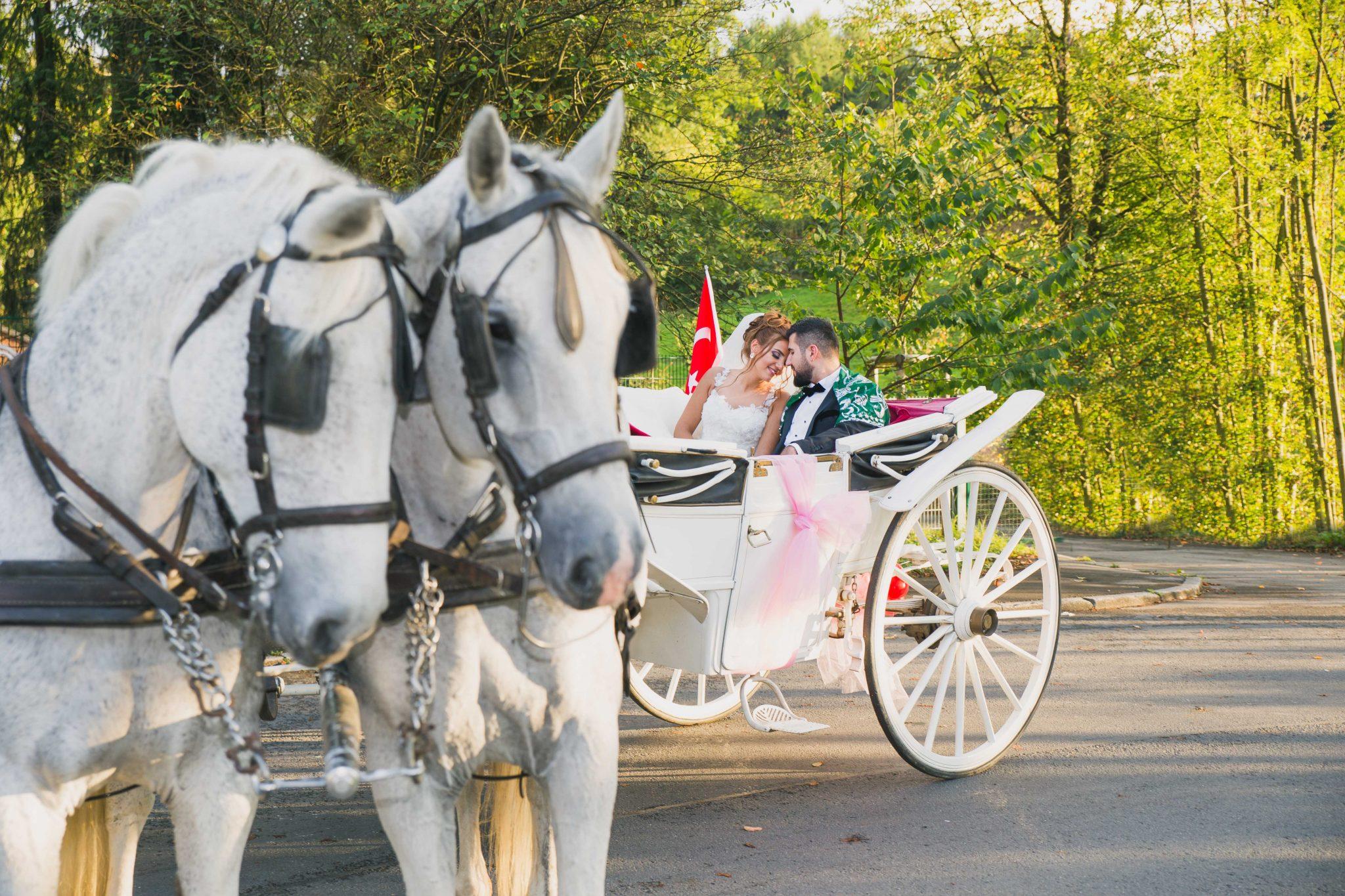 türkischer fotograf hochzeitsfotograf fotografiert türkisches brautpaar auf pferdekutsche in werdohl cici saray gelin ve damat payton dügün fotografcisi